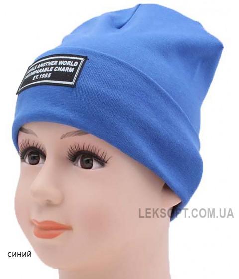 Детская трикотажная шапка BTA02013-48-50