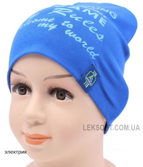 Детская трикотажная шапка Арчи